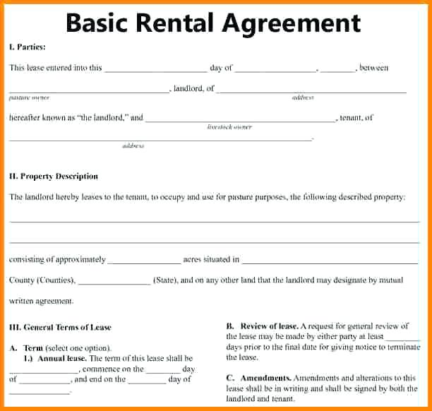 Basic and Simple Rental Agreement Three