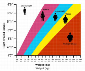 BMI Chart For Adults in KG or LBS