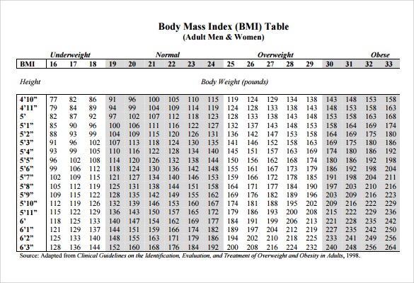 BMI Chart Templates One