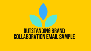 Brand Collaboration Email